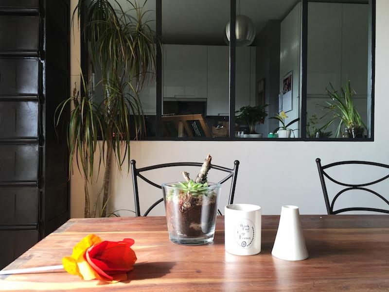Un jardin dans son appartement - plantes, fleurs, fruits et legumes ©aunomi
